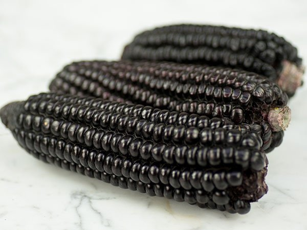 Black corn seeds