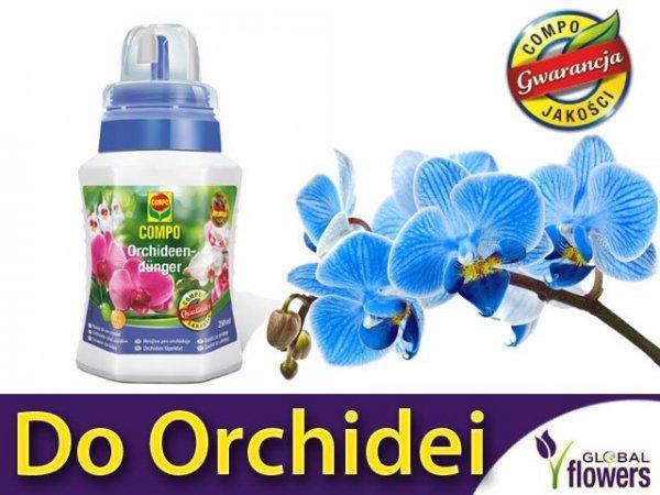 Płynny nawóz do orchidei storczyków 250 ml