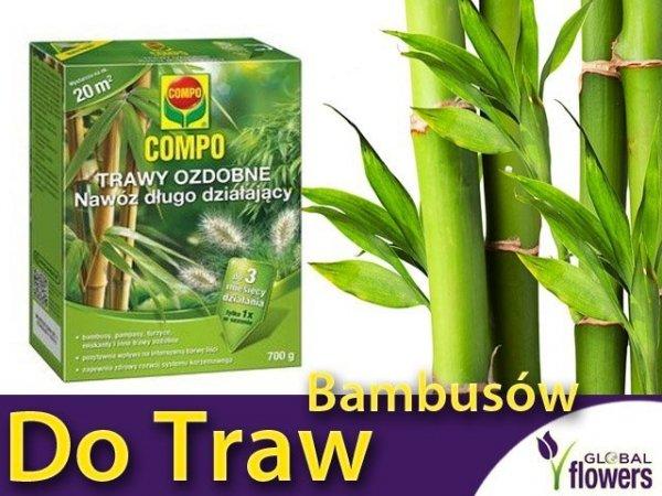 nawóz do bambusów i traw ozdobnych