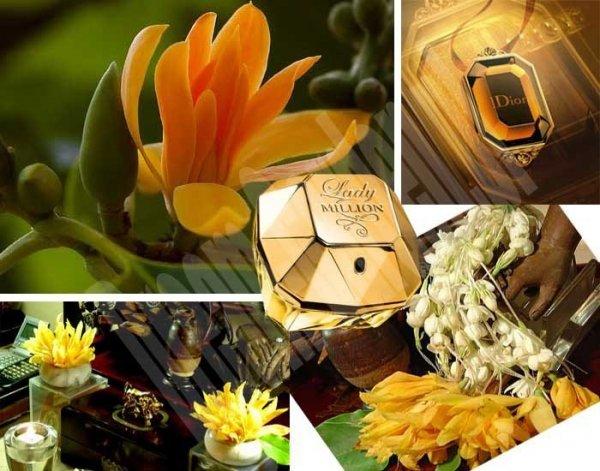 Kwiat Perfum - cudownie pachnący