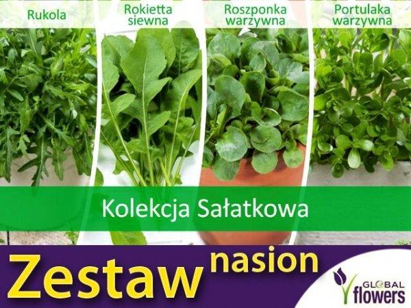 Warzywa na sałatki nasiona
