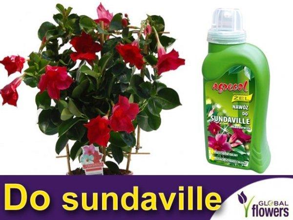 Agrecol Nawóz Mineral Żel do sundaville 0,25l