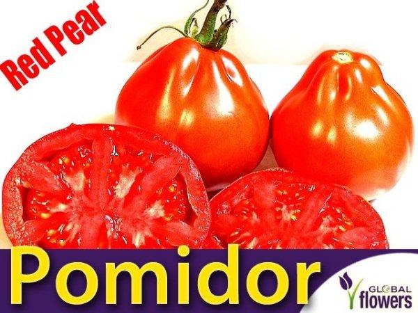 Pomidor Red Pear -Czerwona Gruszka