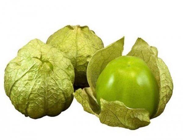 Miechunka pomidorowa (Physalis ixocarpa) 0,5 g