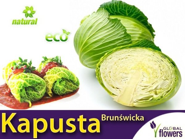 Kapusta Brunświcka - Najlepsza na gołąbki (Convar.Capitatan var. Alba) XL 100g