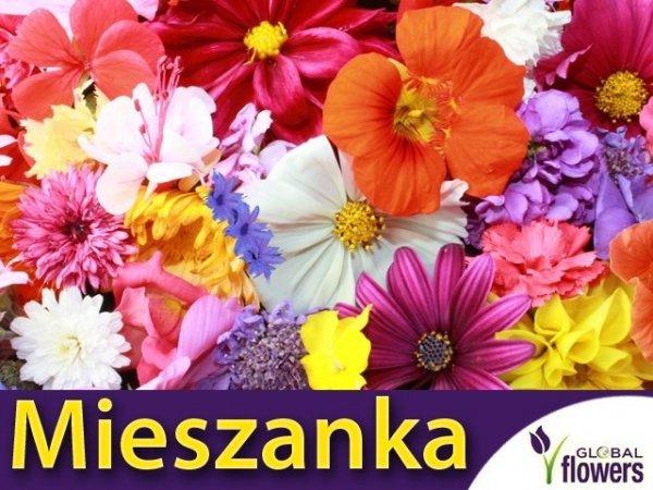 Mieszanka roślin o pachnących kwiatach
