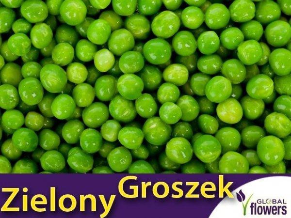 Groch Łuskowy - zielony groszek- Sześciotygodniowy (Pisum sativum) XXL 1000g