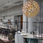 Piękno drewnianych lamp David Trubridge