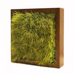 Kostka z trawy w drewnianej oprawie na stół czy biurko