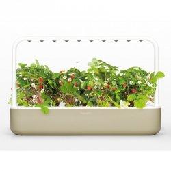 Smart Garden 9 Beżowy