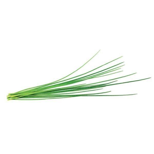Świeży szczypiorek w kuchni przez cały rok z doniczkami Click and Grow