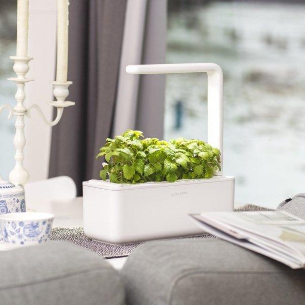 Doniczki Smart Garden Click and Grow to prosta uprawa ziół w twojej kuchni