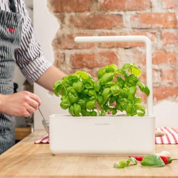 Stylowe doniczki inteligentne to prosta uprawa warzyw i ziół oraz nowoczesny design