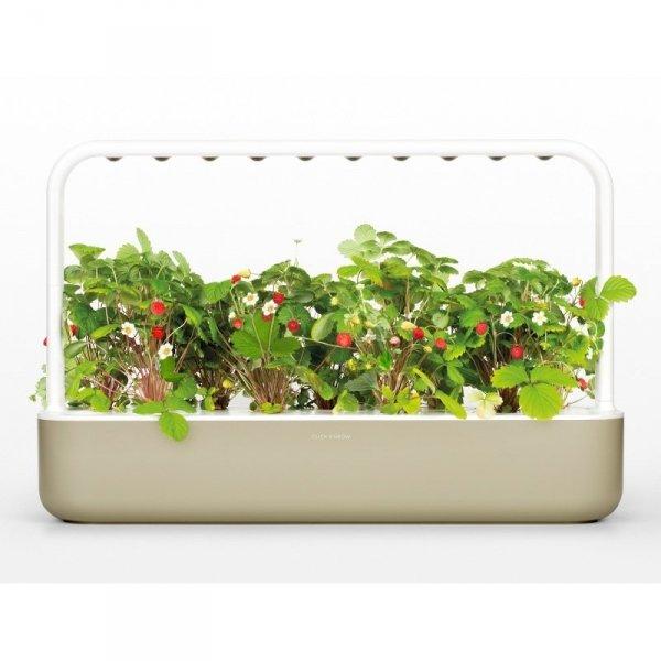 Nowoczesny inteligentny ogród ziołowy z lampą LED Smart Garden 9