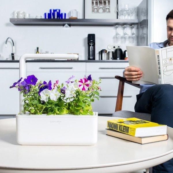 Stylowe kapsułki roślinne do doniczek Smart Garden Click and Grow