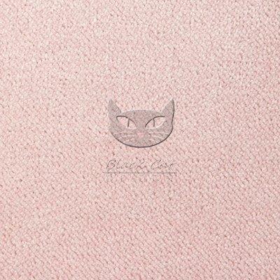 biuro@blackcatdesign.com.pl