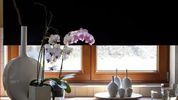 Zaciemniająca roleta okienna świetnie nadaje się do kuchni sypialniani i salonu