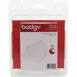 Karty plastikowe Evolis Badgy 100szt CBGC0030W