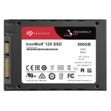 Seagate IronWolf 125 SSD 500GB ZA500NM1A002