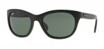 Ray Ban RB 4216 601-S/71