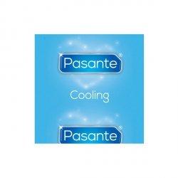 Pasante Cooling 1 sztuka
