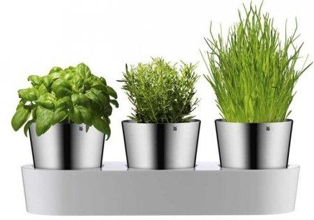 WMF - Zestaw 3 doniczek na zioła, Gourmet