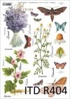 łąka, rośliny, motyl, motyle, rumianek, hibiskus, lawenda, kwiat, kwiaty, zioła, ziółka, R404