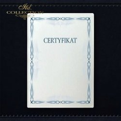 dyplom DS0311 certyfikat