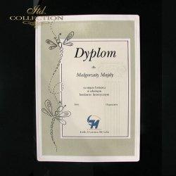Dyplom Konkursowy historyczny 12