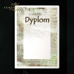 dyplom DS0219