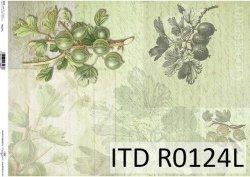 Papier ryżowy ITD R0124L