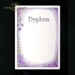 dyplom DS0263