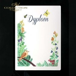 dyplom DS0239