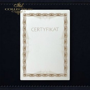 диплом DS0325 универсальный сертификат
