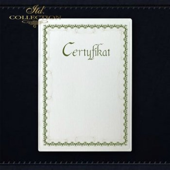 диплом DS0296 универсальный сертификат