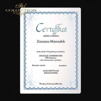 диплом DS0333 универсальный сертификат