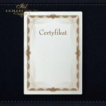 диплом DS0286 универсальный сертификат