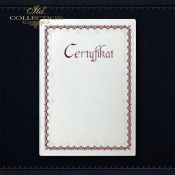 Diplom DS0294 Universelles Zertifikat