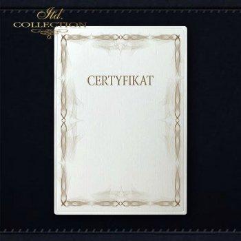 Diplom DS0309 Universelles Zertifikat