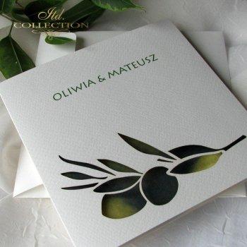 Einladungskarten / Hochzeitskarte 1731_47_Oliven