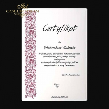 diploma DS0335 universal certificate