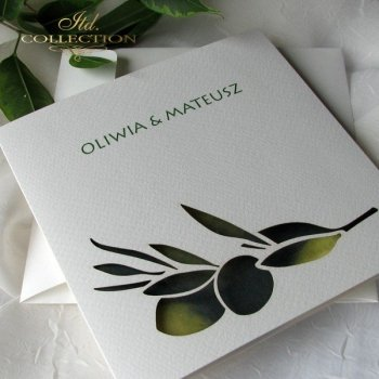 Invitations / Wedding Invitation 1731_47_olives