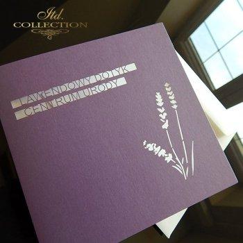 Zaproszenie biznesowe ZB1021 z kopertą