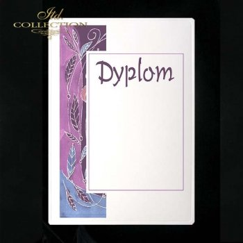 dyplom DS0095