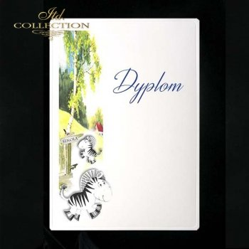 dyplom DS0119