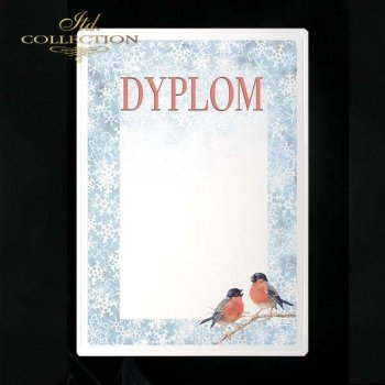 dyplom DS0046