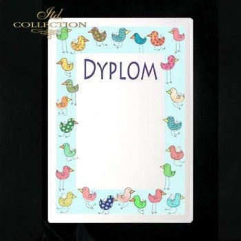 dyplom DS0242