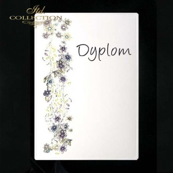 dyplom DS0074