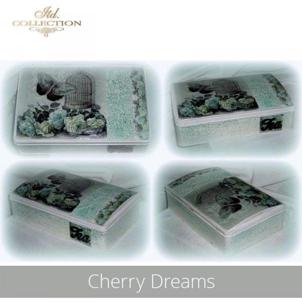 20190501-Cherry Dreams-R0760-A4-ITD D0542-example 01