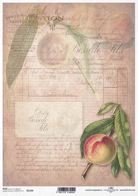 Papier decoupage Frucht*Fruta de decoupage de papel*Бумага для декупажа